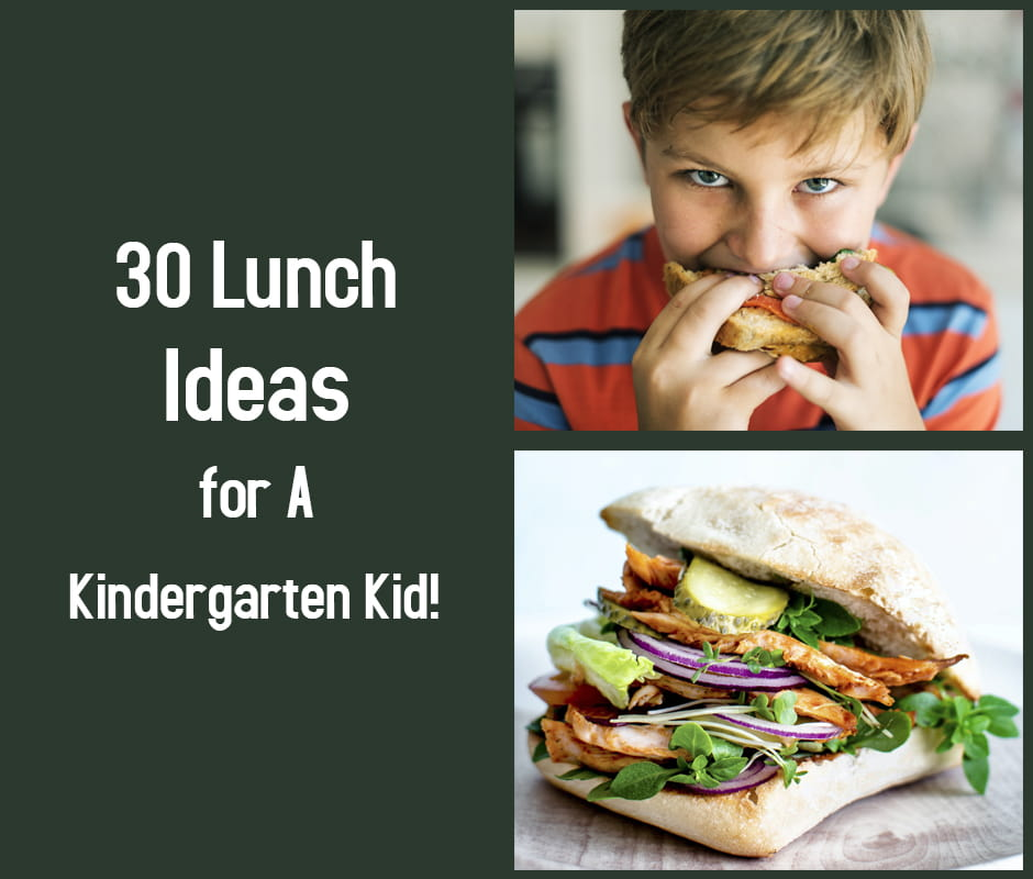 30 Lunch Ideas for A Kindergarten Kid